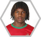 Renato Sanches_cromo